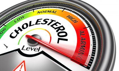 Che cosa è il colesterolo? 8 miti da sfatare