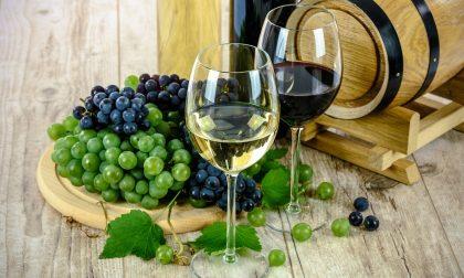 Corsi degustazioni vini per tutti i wine lovers