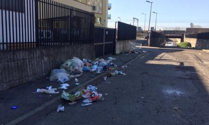 Il degrado nelle vie di San Giuliano Milanese scorre sui social