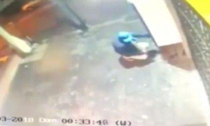 """Tenta di rubare ancora nel bar a Pieve, proprietario esasperato: """"Ora basta"""""""