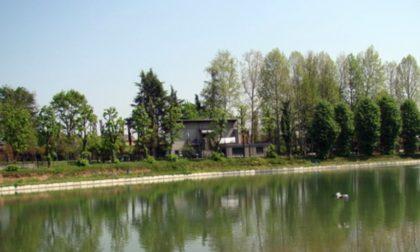 Bar parco Cabassina di Corsico, terzo bando per la concessione: base d'asta 3mila euro