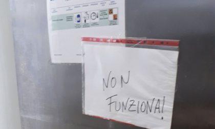 La mensa non piace a Buccinasco: piatti freddi, pasta scotta e crocchette salate