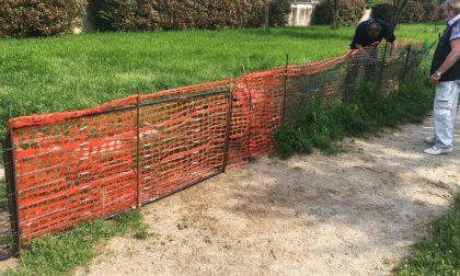 Area cani senza recinzione: ci pensano i cittadini di Cesano Boscone a sistemarla