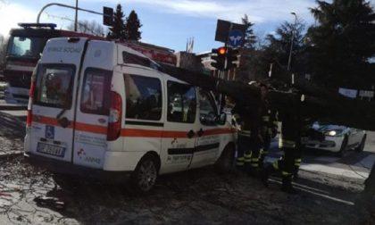 Truffa a Trezzano | Finti soccorritori raccolgono fondi per la Croce Verde
