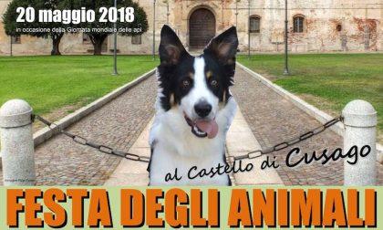 Al via la Festa degli Animali 2018 al Castello di Cusago