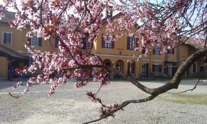 Un'esperienza da non perdere: campus estivi alla Cascina Guzzafame