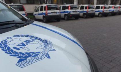 Furti e vandalismi, via ai controlli della vigilanza armata a Buccinasco