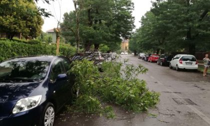 Temporale improvviso sul Sud Milano, qualche danno a Buccinasco