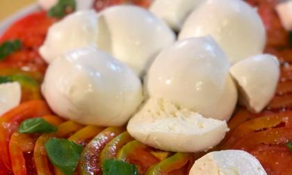 Alcune considerazioni definitive sulla mozzarella casertana.