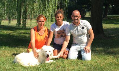 """Sfilate, giochi e adozioni per cani bisognosi: al via """"Gaggiano a 4 zampe"""""""