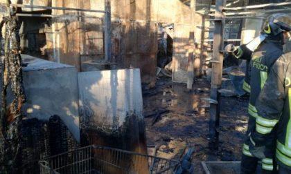 Incendio gattile di Rho, una strage di mici FOTO