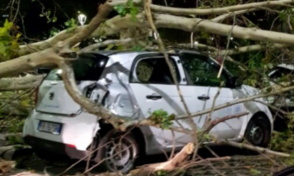 Raffiche di vento a Milano e hinterland: si contano i danni