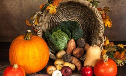 Cibo e bellezza, mangiare sano aiuta il nostro corpo