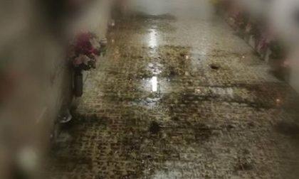 """Cimitero Corsico, infiltrazioni e pozzanghere: """"Una situazione drammatica"""""""