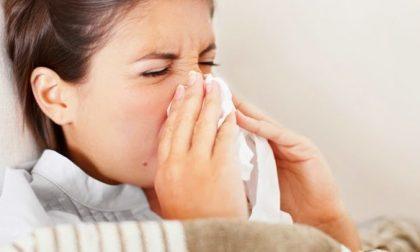 Malattie batteriche e virali, che cosa fare