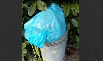 Buttava spazzatura di casa nel cestino pubblico, beccata e multata