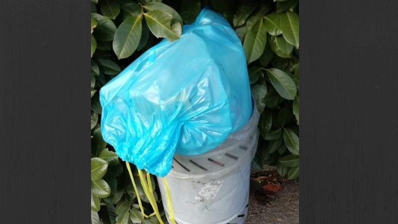 spazzatura di casa nel cestino