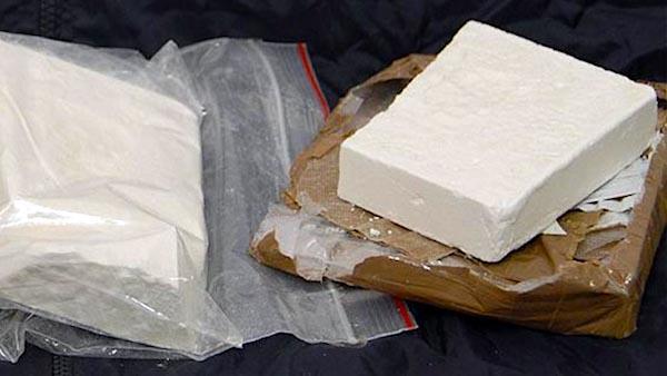 cocaina in Emilia Romagna