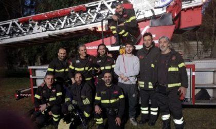 Pappagallo scappa, recuperato e salvato dai Vigili del fuoco