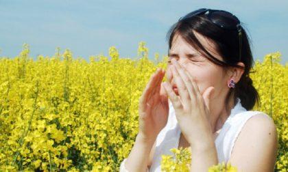 Allergie primaverili, i consigli degli esperti