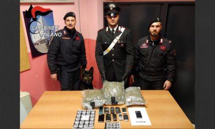 Marijuana in garage, 3 chili e mezzo: arrestato 43enne