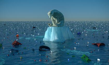 Capire il cambiamento climatico con la mostra al Museo di Storia Naturale