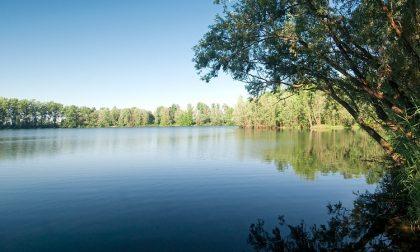 Al via gli interventi sul lago di Basiglio: 195 abbattimenti e piantumazioni in programma