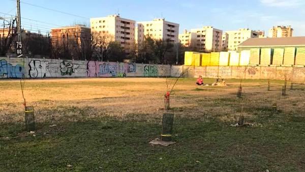 vandali in azione