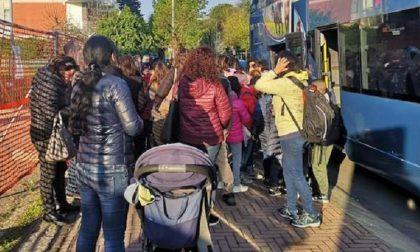 """Bus gita scolastica bloccato, parla l'azienda: """"Accanimento dei genitori"""""""
