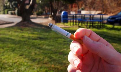 Vietato fumare nei parchi e giardini pubblici: approvata la mozione