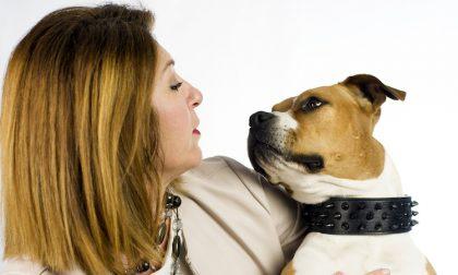 Test del DNA su cane conteso tra due proprietari