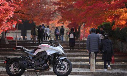 Suzuki Katana pronta al debutto in Italia