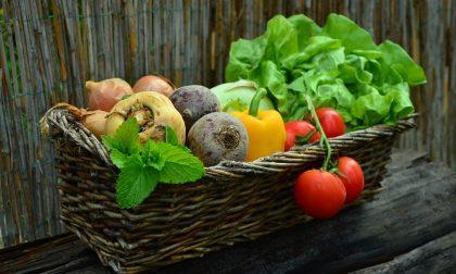 Che cosa si intende con alimentazione biologica?
