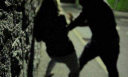 Violenta ragazza di 18 anni al parco: arrestato dai poliziotti