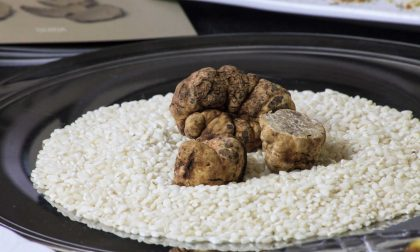 Ricetta per lo sformato di riso al tartufo