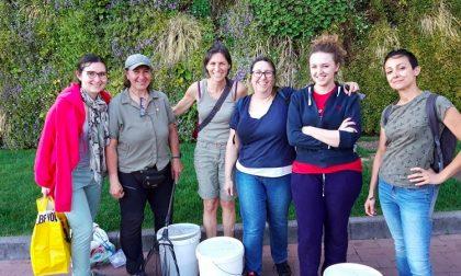 Sos natura: i volontari dell'Oasi Smeraldino salvano migliaia di girini FOTO