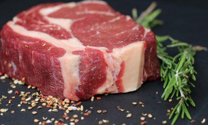 I benefici della carne rossa, ricca di proteine