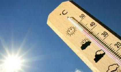 Settimana di caldo torrido in Lombardia: si toccheranno i 40 gradi