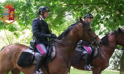 I poliziotti a cavallo arrestano uno spacciatore