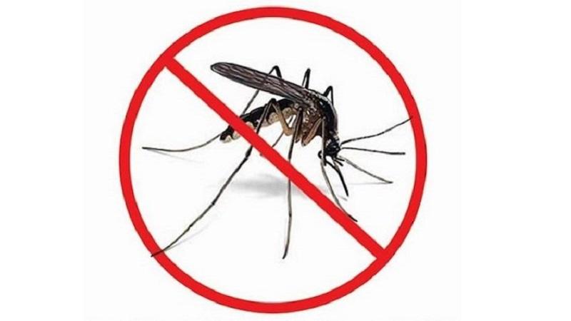 caso dengue