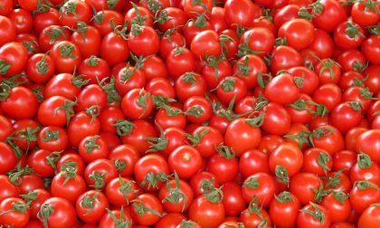 Cosa mangiare in estate, tra frutta e verdura