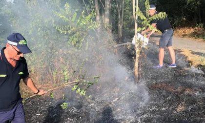Incendio doloso tra gli alberi, lo spengono gli agenti accertatori del Comune FOTO