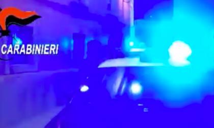 'Ndrangheta, preso il latitante Francesco Riitano