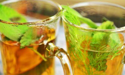 Che cosa bere in estate? Spazio a tè e infusi