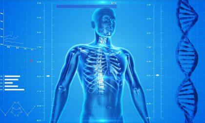 Che cosa è l osteoporosi, nemico che indebolisce le ossa