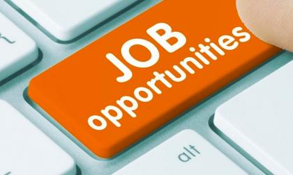 Offerte di lavoro a Buccinasco e Opera