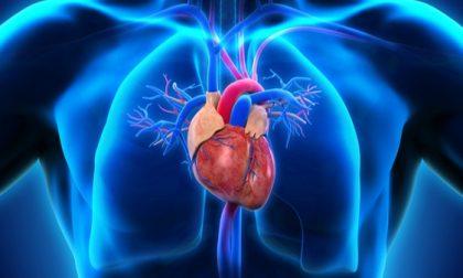 Medicina, nuova scoperta: dai farmaci per il diabete la cura per il grasso del cuore