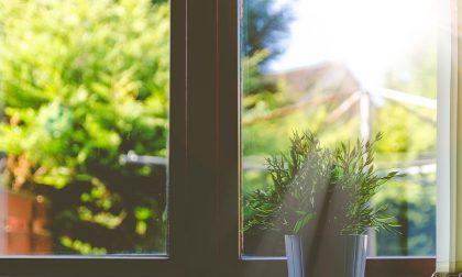 Aria pulita in casa con una pianta per locale