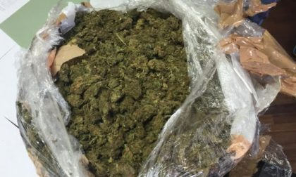 Nasconde tre chili di marijuana nel cestino della bici: arrestato