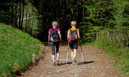 Il nordic walking per rimettersi in forma